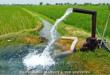 کود اسید هیومیک مایع